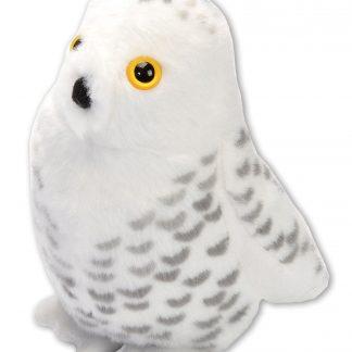 19597-Aud-II-EU-Snowy-Owl