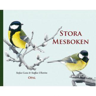 Stora mesboken - fågelbok för barn